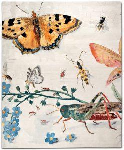 Rug Star Teppich: Eden No. 09 BS, 300 x 250, Wolle und Seide
